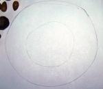 carton-cu-cercuri